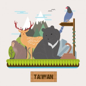 adorable Taiwan endemic species collection